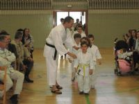 XXXVI Festival de Judo entrega de Diplomas y Méritos 2015